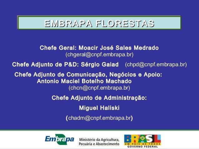 Chefe Geral: Moacir José Sales Medrado(chgeral@cnpf.embrapa.br)Chefe Adjunto de P&D: Sérgio Gaiad (chpd@cnpf.embrapa.br)Ch...
