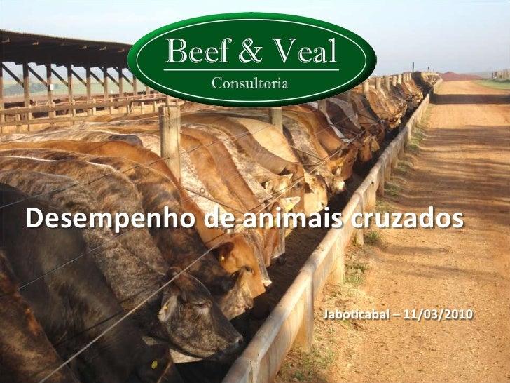 Desempenho de animais cruzados                      Jaboticabal – 11/03/2010                                              ...