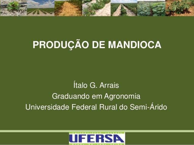 PRODUÇÃO DE MANDIOCA Ítalo G. Arrais Graduando em Agronomia Universidade Federal Rural do Semi-Árido