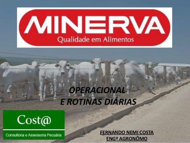 OPERACIONALE ROTINAS DIÁRIAS        FERNANDO NEMI COSTA          ENGº AGRONÔMO