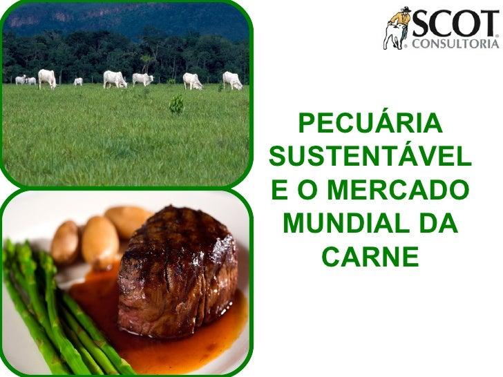 PECUÁRIA SUSTENTÁVEL E O MERCADO MUNDIAL DA CARNE