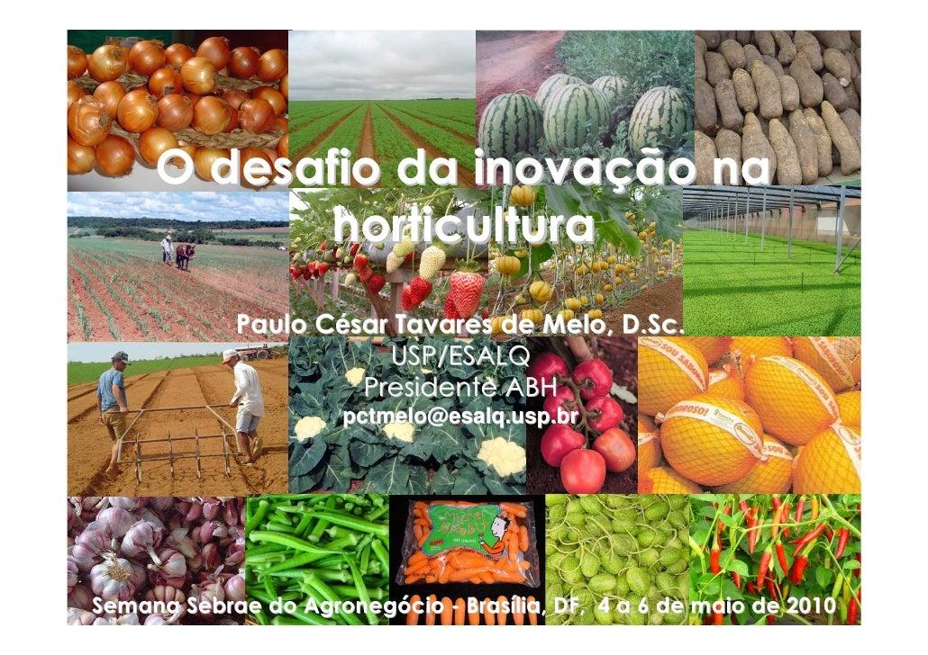 O desafio da inovação na            horticultura             Paulo César Tavares de Melo, D.Sc.                        USP...