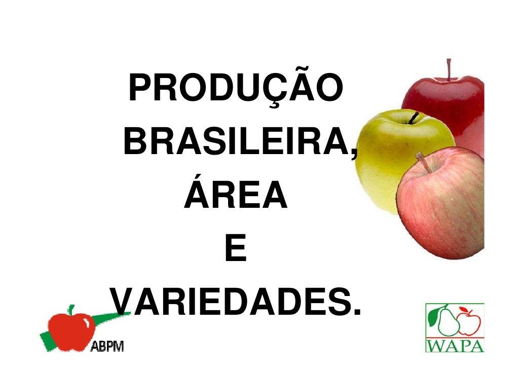 PRODUÇÃO BRASILEIRA,   ÁREA     EVARIEDADES.