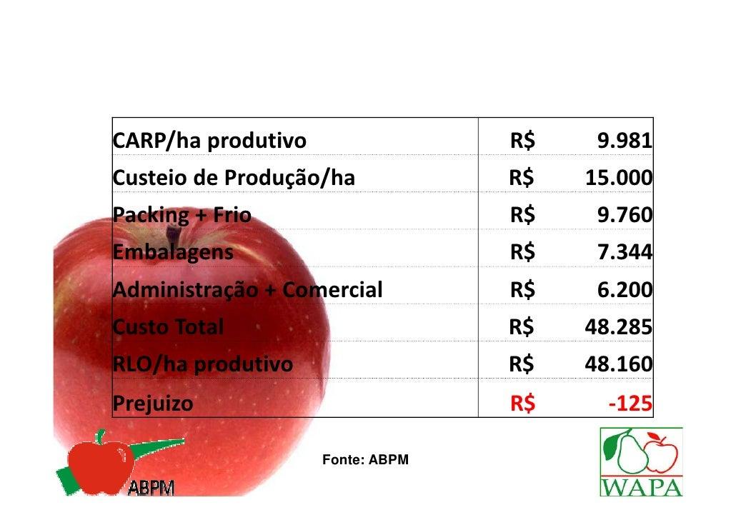 MERCADO INTERNO• Capacidade do Setor de atender as novas  exigências de consumo, valorizando o  modelo de produção atual a...