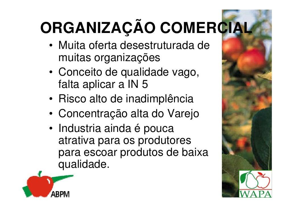 Medo de Perder e Disponibilidade de        Produtos de QualidadeAs Razões Pelas Quais os Consumidores NÃO  Comem uma Maior...