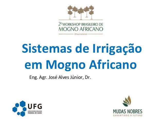 Sistemas de Irrigação em Mogno Africano Eng. Agr. José Alves Júnior, Dr.