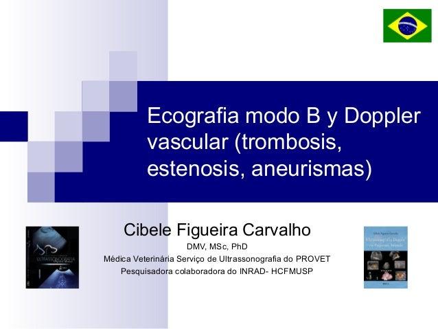 Ecografia modo B y Doppler vascular (trombosis, estenosis, aneurismas) Cibele Figueira Carvalho DMV, MSc, PhD Médica Veter...