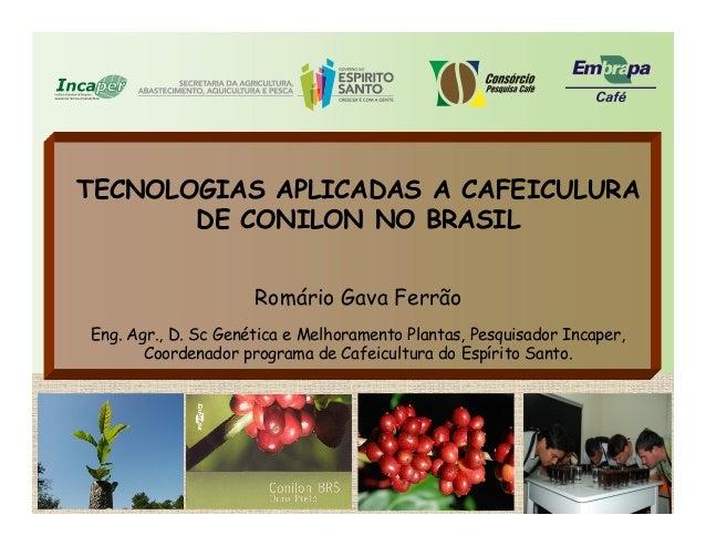 TECNOLOGIAS APLICADAS A CAFEICULURA DE CONILON NO BRASIL Romário Gava Ferrão Eng. Agr., D. Sc Genética e Melhoramento Plan...