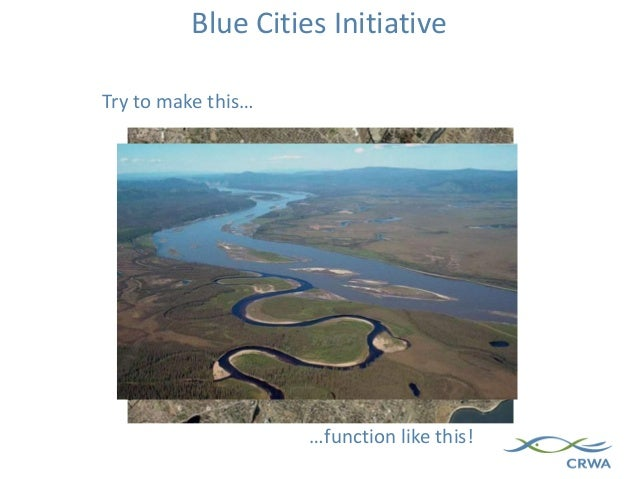 Blue Cities Initiative …function like this! Try to make this…
