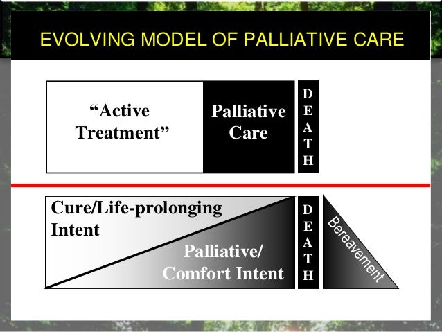 the development of palliative care nursing essay Evidence-based design practices for the palliative care environment approximately 75% die in hospitals or nursing homes as one essay points out.
