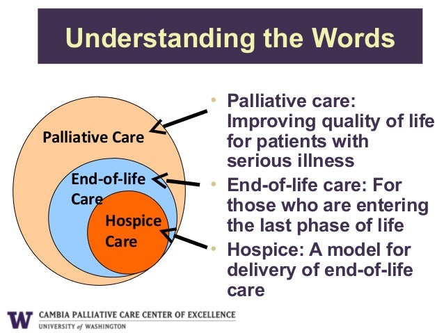 The Role of Palliative Care at the End of Life