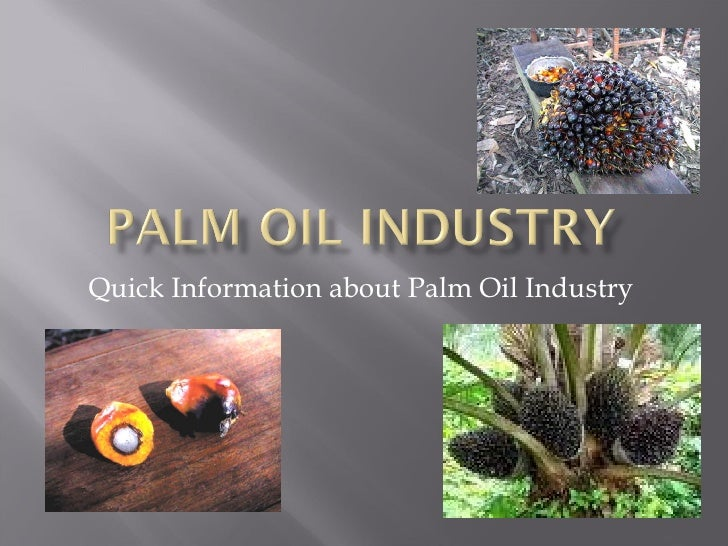 Quick Information about Palm Oil Industry
