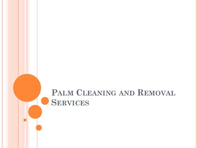 PALM CLEANING AND REMOVAL SERVICES