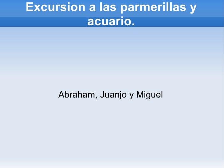 Excursion a las parmerillas y acuario. Abraham, Juanjo y Miguel
