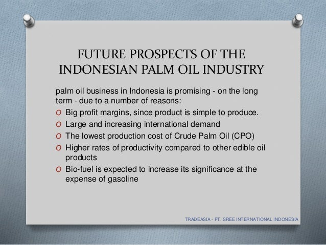 palm oil industry Palm oil: pros and cons palm oil may be a  international human rights groups as well as organizations in columbia say the palm oil industry is closely linked with.
