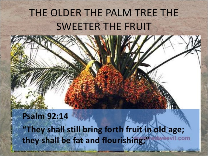 Image result for psalm 92:14 fat and flourishing