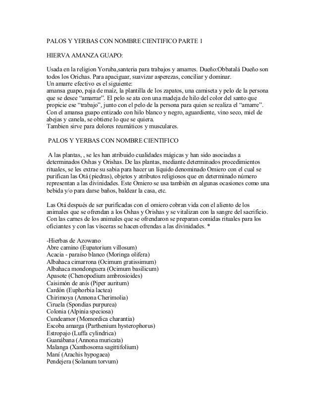 PALOS Y YERBAS CON NOMBRE CIENTIFICO PARTE 1 HIERVA AMANZA GUAPO: Usada en la religion Yoruba,santeria para trabajos y ama...