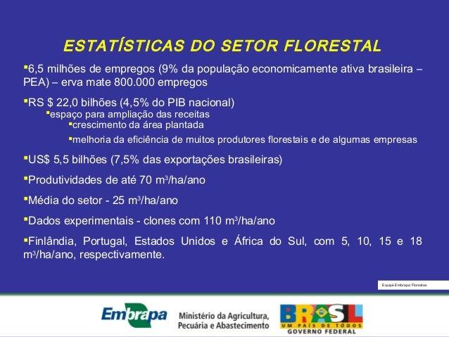 Equipe Embrapa FlorestasESTATÍSTICAS DO SETOR FLORESTAL6,5 milhões de empregos (9% da população economicamente ativa bras...