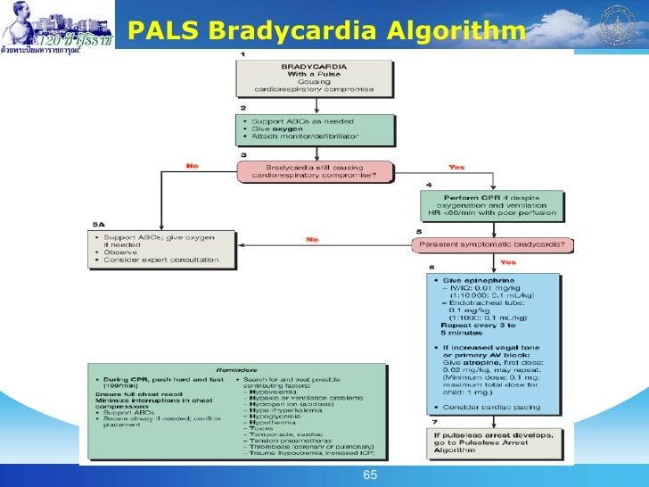 pals algorithm