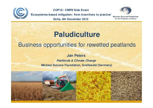 COP18 / CMP8 Side Event                 'Ecosystems-based mitigation: from incentives to practice'                        ...
