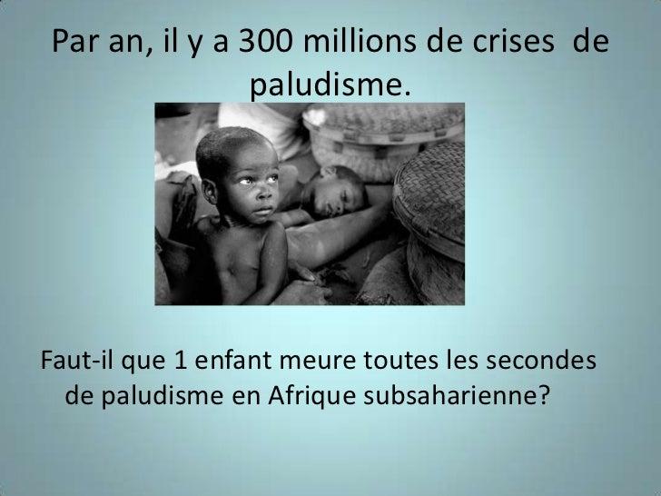 Le Paludisme Slide 2