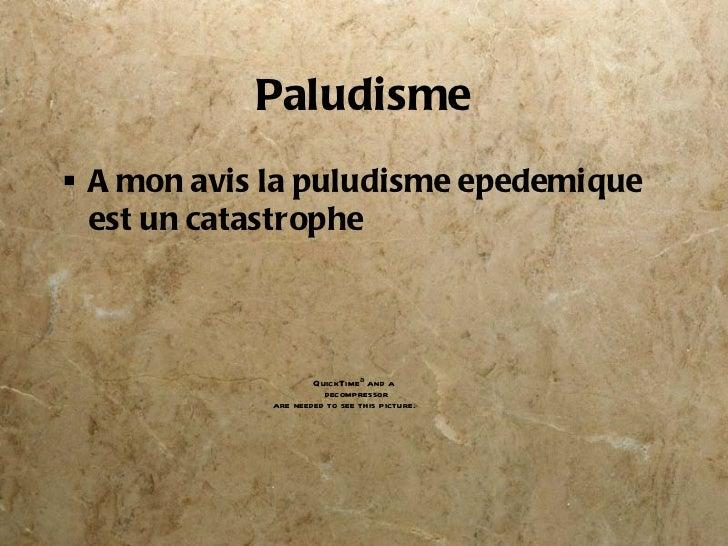 Paludisme <ul><li>A mon avis la puludisme epedemique est un catastrophe </li></ul>