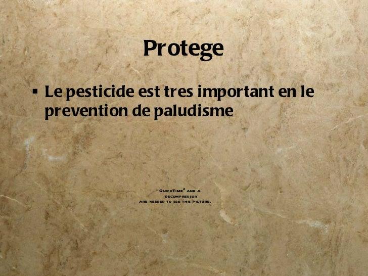 Protege <ul><li>Le pesticide est tres important en le prevention de paludisme </li></ul>