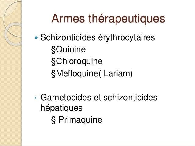 Paludisme (vue de l'Algérie)