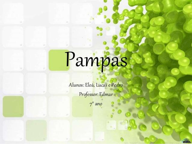 Pampas Alunos: Eloá, Lucas e Pedro Professor: Edmar 7° ano