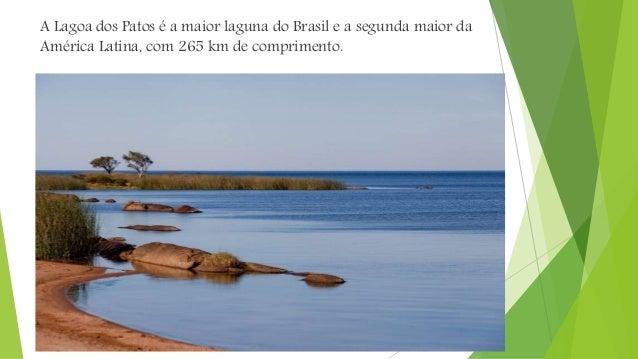 Impactos ambientais  Os pampas possui ótimas condições para a agricultura e a pecuária, atualmente a maior parte da veget...