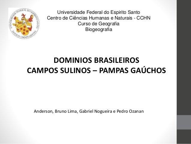 Universidade Federal do Espirito Santo Centro de Ciências Humanas e Naturais - CCHN Curso de Geografia Biogeografia DOMINI...
