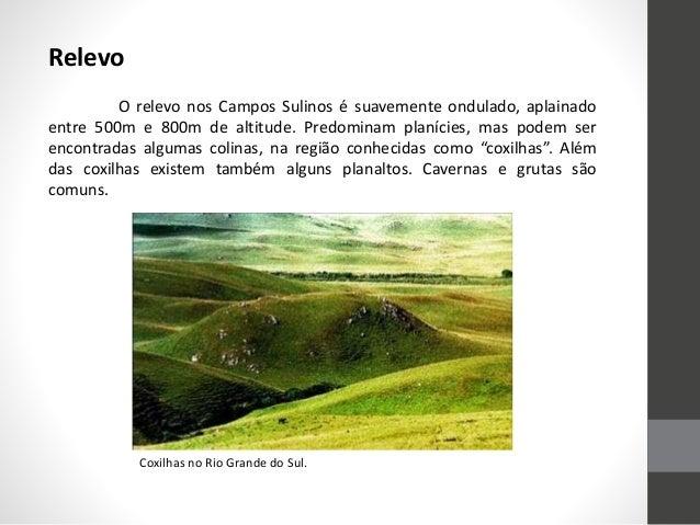 Relevo O relevo nos Campos Sulinos é suavemente ondulado, aplainado entre 500m e 800m de altitude. Predominam planícies, m...