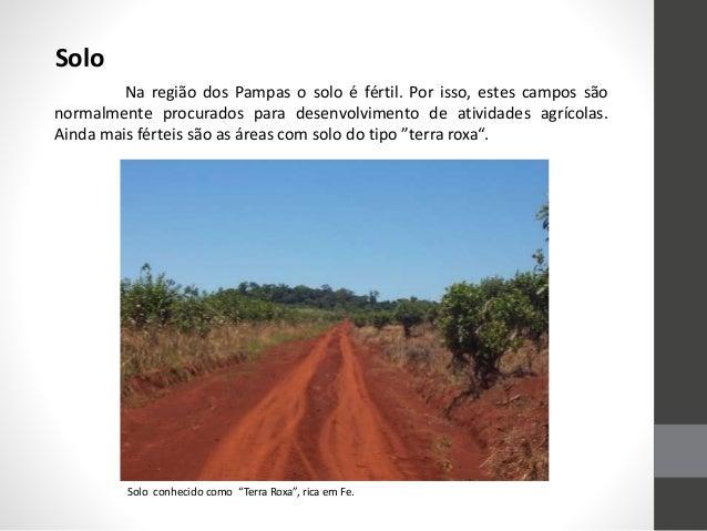 Solo Na região dos Pampas o solo é fértil. Por isso, estes campos são normalmente procurados para desenvolvimento de ativi...