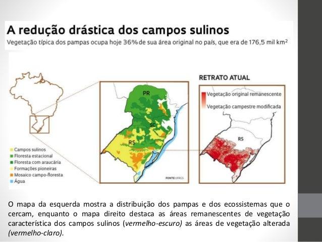 O mapa da esquerda mostra a distribuição dos pampas e dos ecossistemas que o cercam, enquanto o mapa direito destaca as ár...