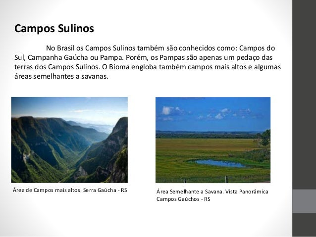 No Brasil os Campos Sulinos também são conhecidos como: Campos do Sul, Campanha Gaúcha ou Pampa. Porém, os Pampas são apen...