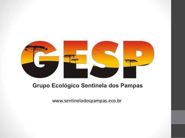 www.sentineladospampas.eco.br