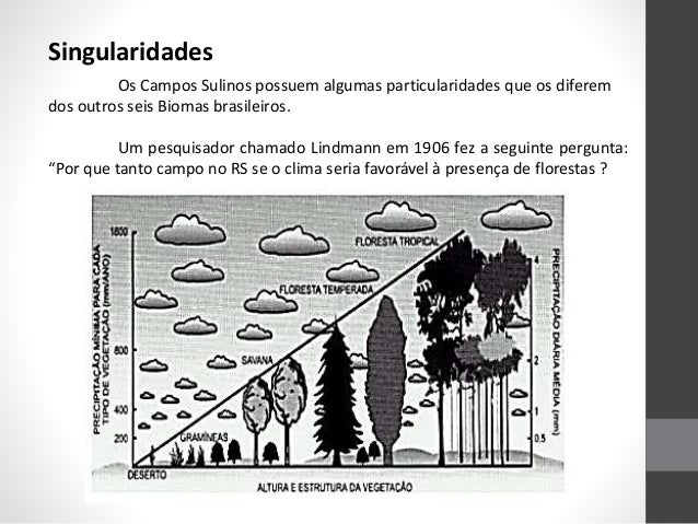 • Os períodos climáticos que ocorreram entre 42.000-10.000a.C. Desde a era gelo, as gramíneas dominam, indicando que o cli...
