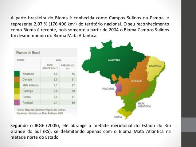 A parte brasileira do Bioma é conhecida como Campos Sulinos ou Pampa, e representa 2,07 % (176.496 km2) do território naci...