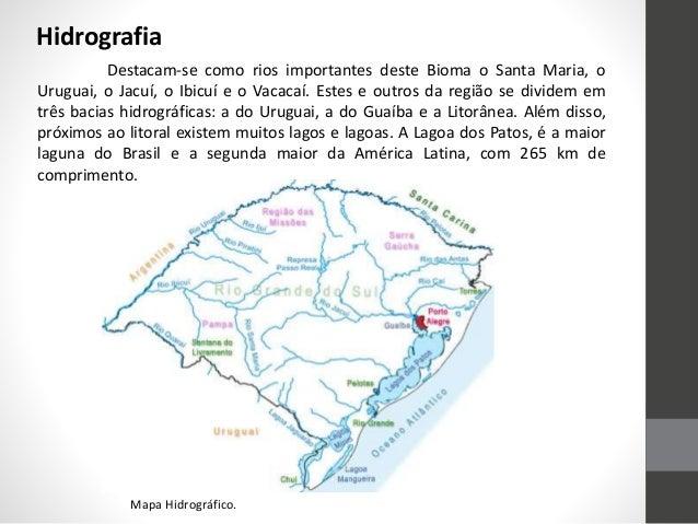 Destacam-se como rios importantes deste Bioma o Santa Maria, o Uruguai, o Jacuí, o Ibicuí e o Vacacaí. Estes e outros da r...