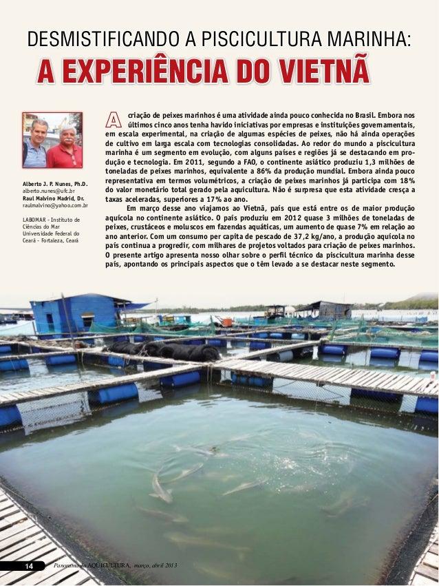 14 Panorama da AQÜICULTURA, março, abril 2013 A EXPERIÊNCIA DO VIETNÃ Alberto J. P. Nunes, Ph.D. alberto.nunes@ufc.br Raul...