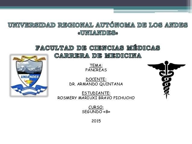 TEMA: PÁNCREAS DOCENTE: DR. ARMANDO QUINTANA ESTUDIANTE: ROSMERY MARIUXI BRAVO PICHUCHO CURSO: SEGUNDO «B» 2015