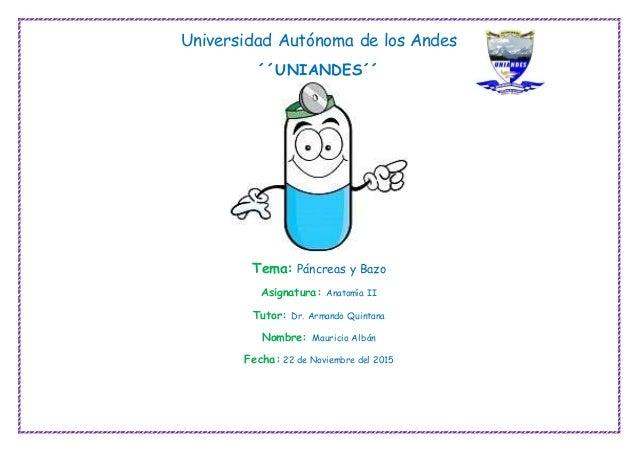 Universidad Autónoma de los Andes ´´UNIANDES´´ Tema: Páncreas y Bazo Asignatura: Anatomía II Tutor: Dr. Armando Quintana N...