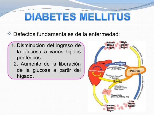 Fisiologia del Pancreas
