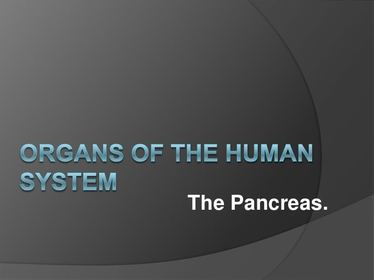 Organs of The Human System<br />The Pancreas.<br />