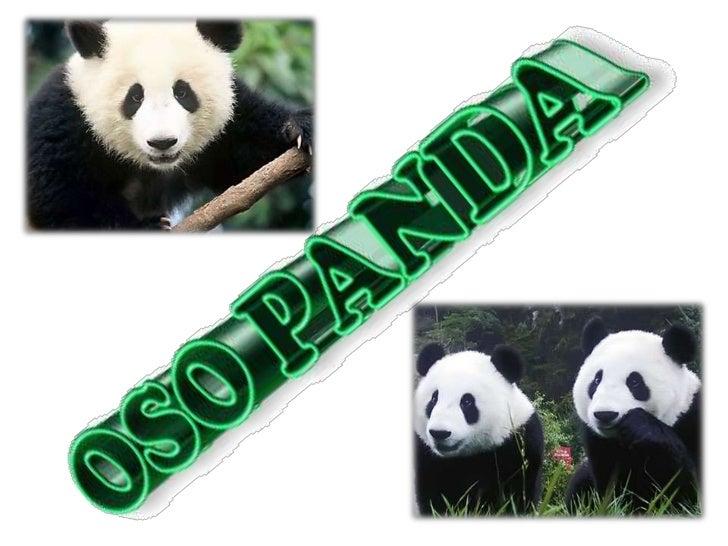 Panda Slide 1