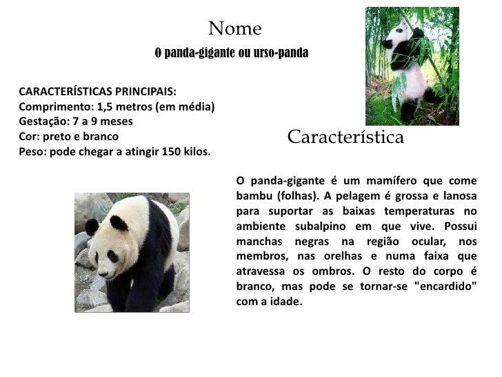 Nome                          O panda-gigante ou urso-pandaCARACTERÍSTICAS PRINCIPAIS:Comprimento: 1,5 metros (em média)Ge...