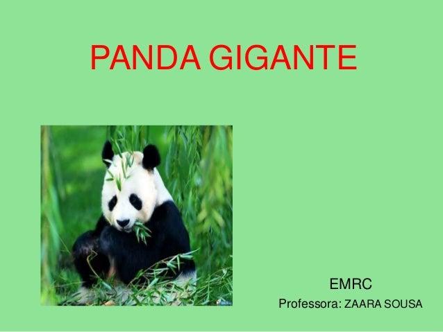 PANDA GIGANTEEMRCProfessora: ZAARA SOUSA