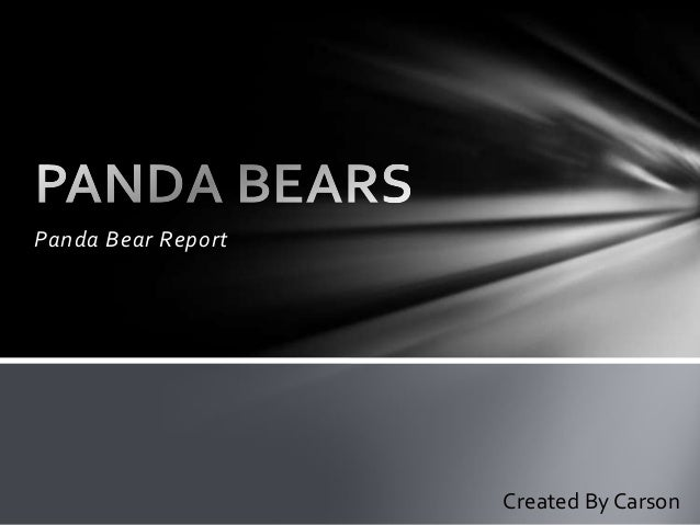 Panda Bear Report Created By Carson