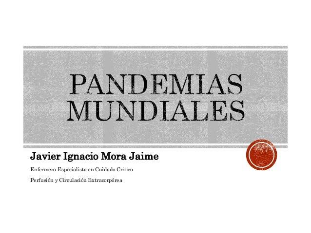 Javier Ignacio Mora Jaime  Enfermero Especialista en Cuidado Critico  Perfusión y Circulación Extracorpórea