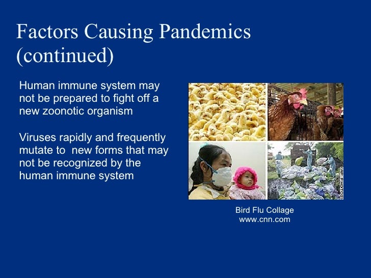 Factors Causing Pandemics (continued) <ul><li>Human immune system may not be prepared to fight off a new zoonotic organism...
